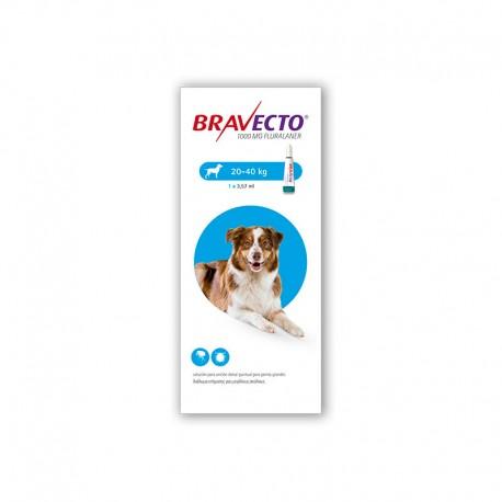 Bravecto Spot On 1000Mg 1Pip 20-40Kg L Azul
