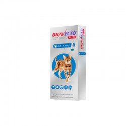 Bravecto Gato Plus 250Mg 1Pip 2,8-6,25Kg Azul