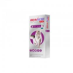 Bravecto Gato Plus 500Mg 1Pip 6,25-12,5Kg Violeta