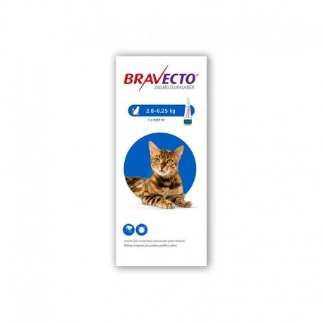 Bravecto Gato 250Mg 1Pip 2,8-6,25Kg Azul