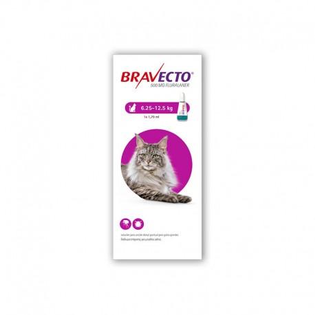 Bravecto Gato 500Mg 1Pip 6,25-12,5Kg Violeta
