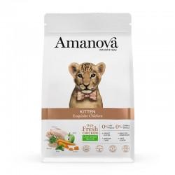 Amv Kitten Exquisite Chicken & Quinoa 1,5Kg