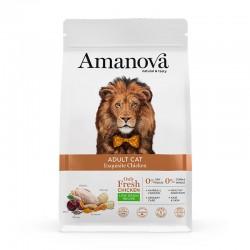 Amv Adult Cat Exquisite Chicken & Quinoa 6Kg