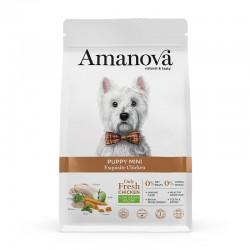 Amv Puppy Mini Exquisite Chicken Quinoa 2Kg