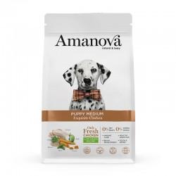 Amv Puppy Medium Exquisite Chicken Quinoa 2Kg