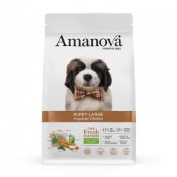 Amv Puppy Large Exquisite Chicken Quinoa 12Kg