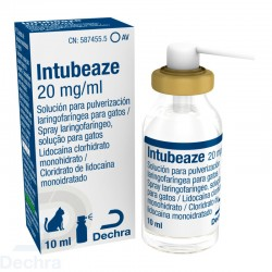 Intubeaze 20 Mg/Ml