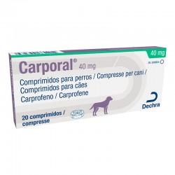 Carporal 40Mg 20Comp
