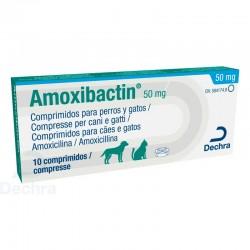 Amoxibactin 50Mg 10Comp