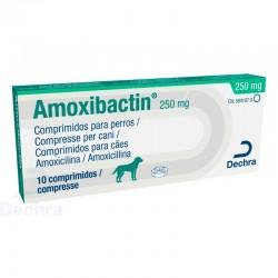 Amoxibactin 250Mg 10Comp
