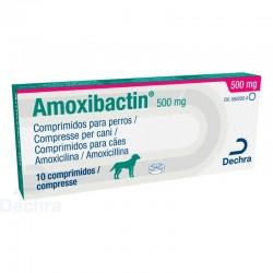 Amoxibactin 500Mg 10Comp