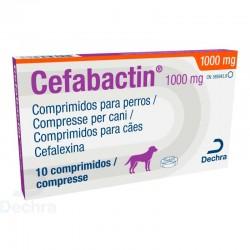 Cefabactin 1000Mg 10Comp