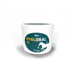 Hyaloral Equino 840G