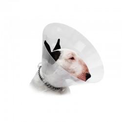 Collar Isabelino Transparente 20Cm Covetrus