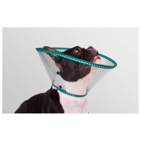 Collar EcoProtec Braquic?falo 20Cm Verde 8Uds