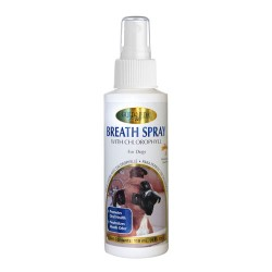 Breath Spray Desodorante Boca