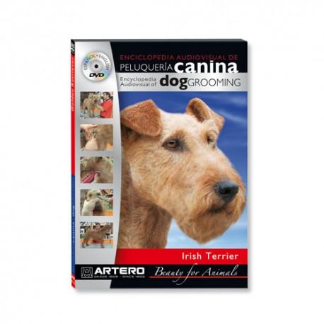 Dvd Irish Terrier