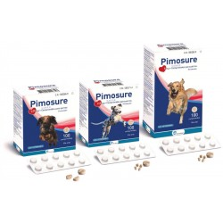Pimosure 1,25Mg 100 Comp.