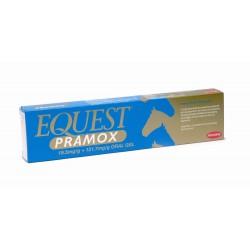 Equest Pramox 14,4Gr 1 Jeringa