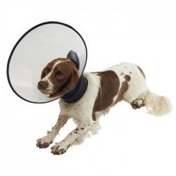 Collar Buster Premium Dog Starter Pack 5Uds