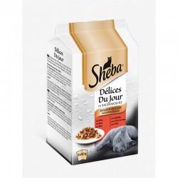 Sheba Delices Dy Jour Carnes 12X6X50Gr