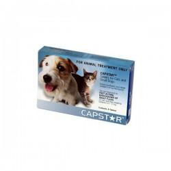 Capstar 11 Caja De 6 Comp