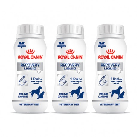 Vd Recovery Cat/Dog Liquid 3 X 200Ml