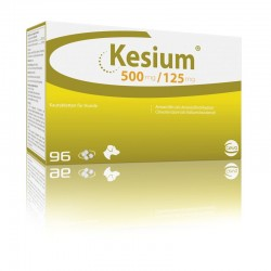 Kesium 625Mg 96 Comp