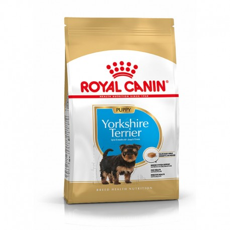 Bhn Yorkshire Puppy 500Gr
