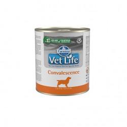 Fm Vet Life Convalescence Perro 6X300Gr