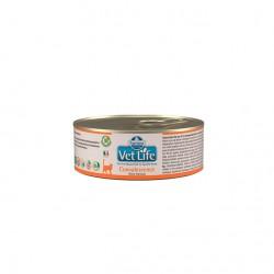 Fm Vet Life Convalescence Gato 12X85Gr
