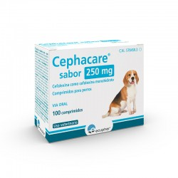Cephacare Sabor 250Mg 100 Comp