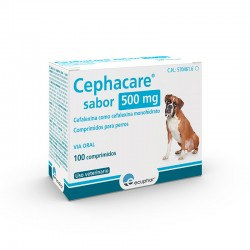 Cephacare Sabor 500Mg 100 Comp