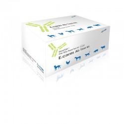 Test CVM Ehrlichia 10Ud