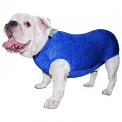 Traje Postquirurgico Bulldog Ingles M