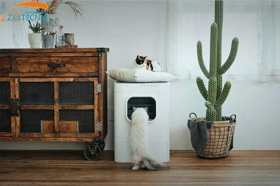 Arena de tu gato: Ya no tendrás que limpiarla más.