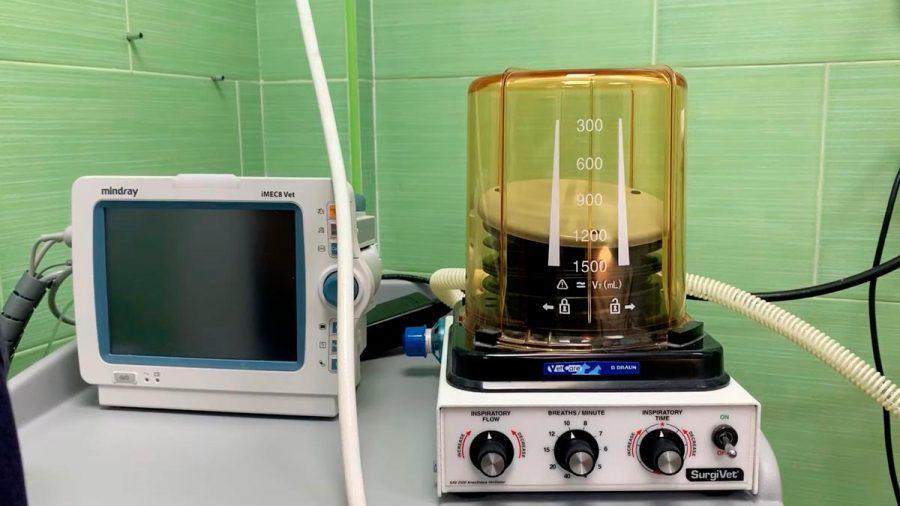 ¿Cómo utilizar ventiladores veterinarios en humanos?