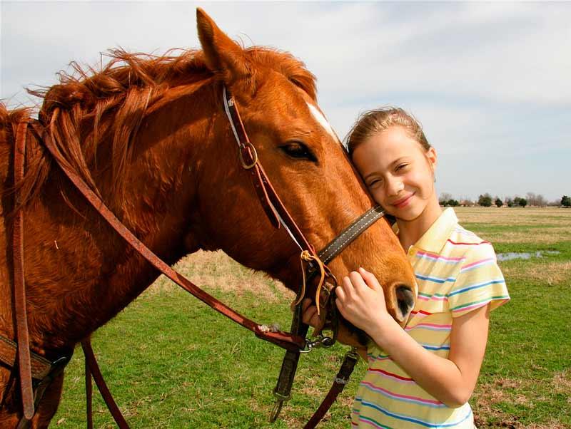 Consejos para la vuelta a la normalidad de los caballos