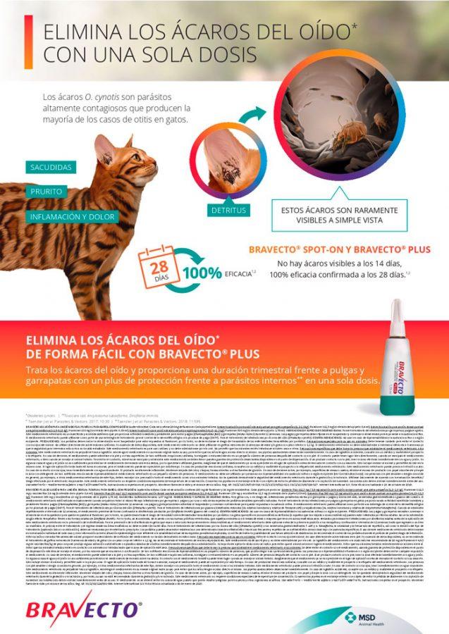 bravecto gato plus elimina ácaros oído