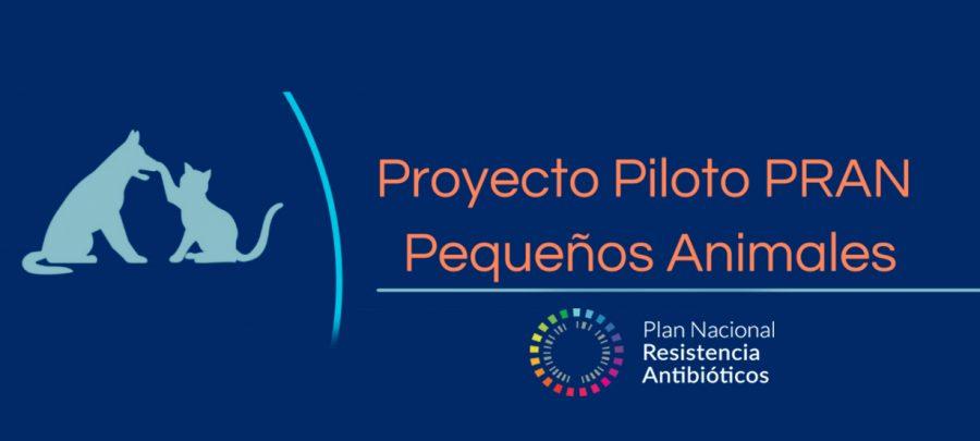 Súmate Proyecto Piloto PRAN y combate la resistencia a antibióticos en pequeños animales